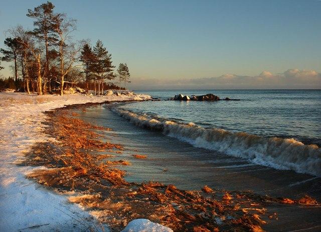Фото Виктора Дрягуева. Источник: http://pomorbereg.ru/
