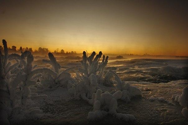 Поморский берег. Фото В. Дрягуева