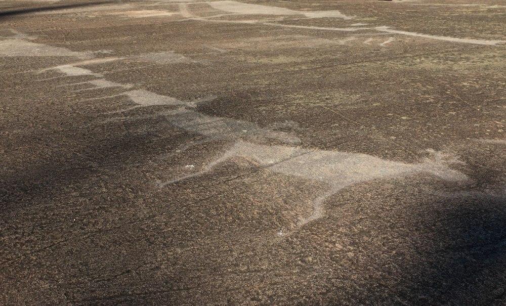 Петроглифы Белого моря. Фото Виктора Дрягуева