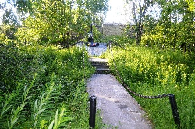 Заросший травой и кустарником памятник до уборки территории.