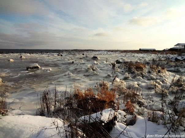 Море покрывается льдом. Фото Т. Каньшиевой