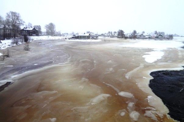 Разлив реки Выг. Фото Т. Каньшиевой