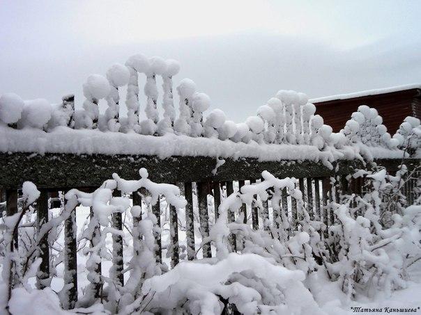 Фантазии волшебницы Зимы. Фото Т. Каньшиевой