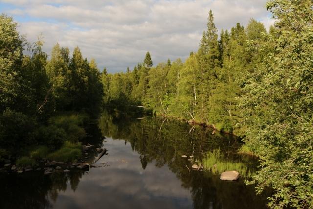 Река Уда. 16 июля 2016 г. Фото Виктора Дрягуева