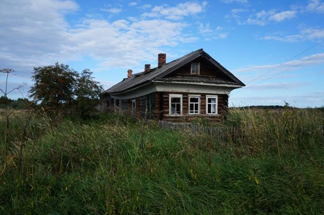 Особенно одинокими смотрятся на фоне этих полей вот такие домики. Шуерецкое. 10 августа 2016 г. Фото С. Кошкиной