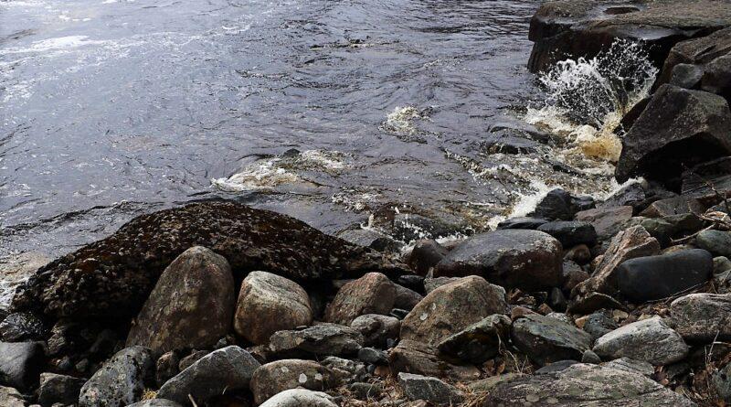 Река Выг и Белое море
