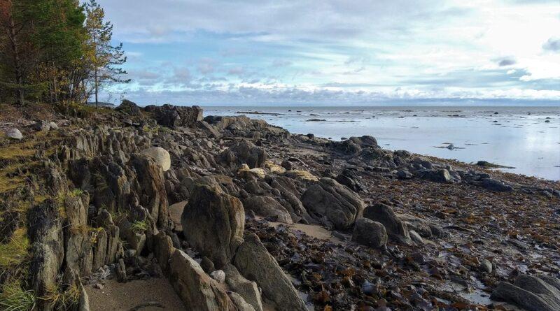 Белое море. Каменистые берега.
