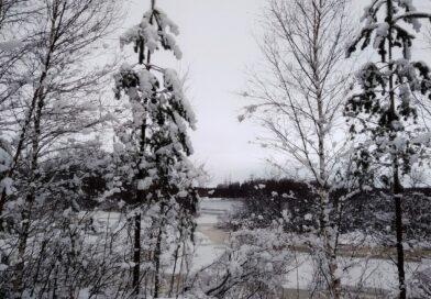 Зимняя сказка карельского леса